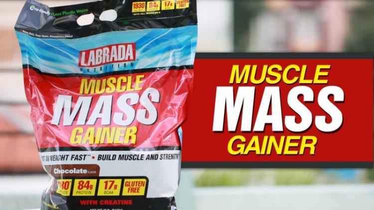 Sữa tăng cân tốt cho tiêu hóa Muscle Gainer