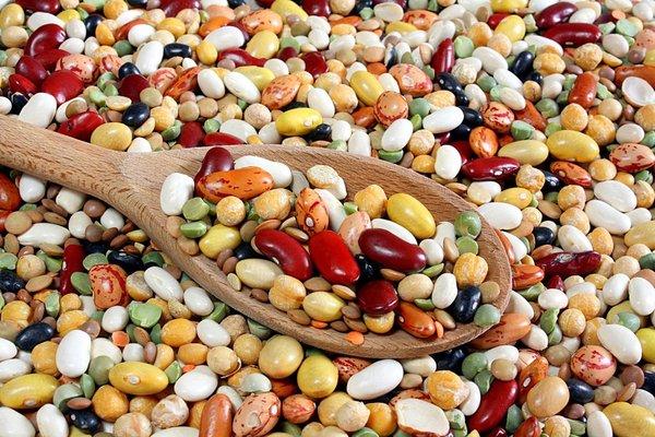 Có nhiều loại đậu có thể làm sữa tăng cân